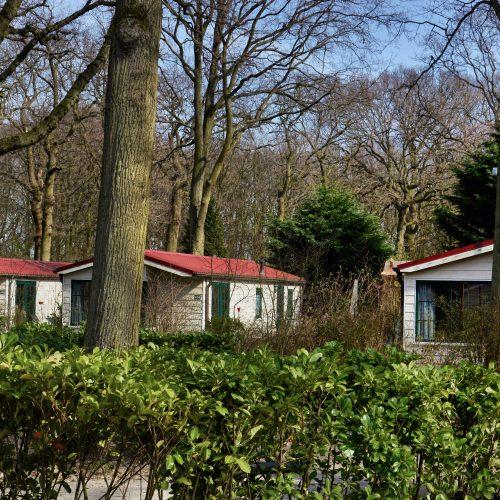 De bungalows liggen in het groen ingebed... comfort -reeks