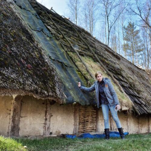 verschillend mogelijke dakbedekkingen: huiden- grassen-scho