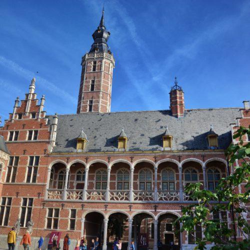 Reeds sinds 1938 is het Hof van Busleyden het museum van de stad Mechelen. Het is een prachtig gebouw uit de beginjaren van de 16de eeuw dat zich bevind in het hart van de stad. Het gebouw in vroeg-renaissancestijl en Brabantse baksteengotiek kwam er in opdracht van Jeroen of Jeronimus van Busleyden, een Luxemburgse mecenas en humanist en lid van de Grote Raad van Mechelen